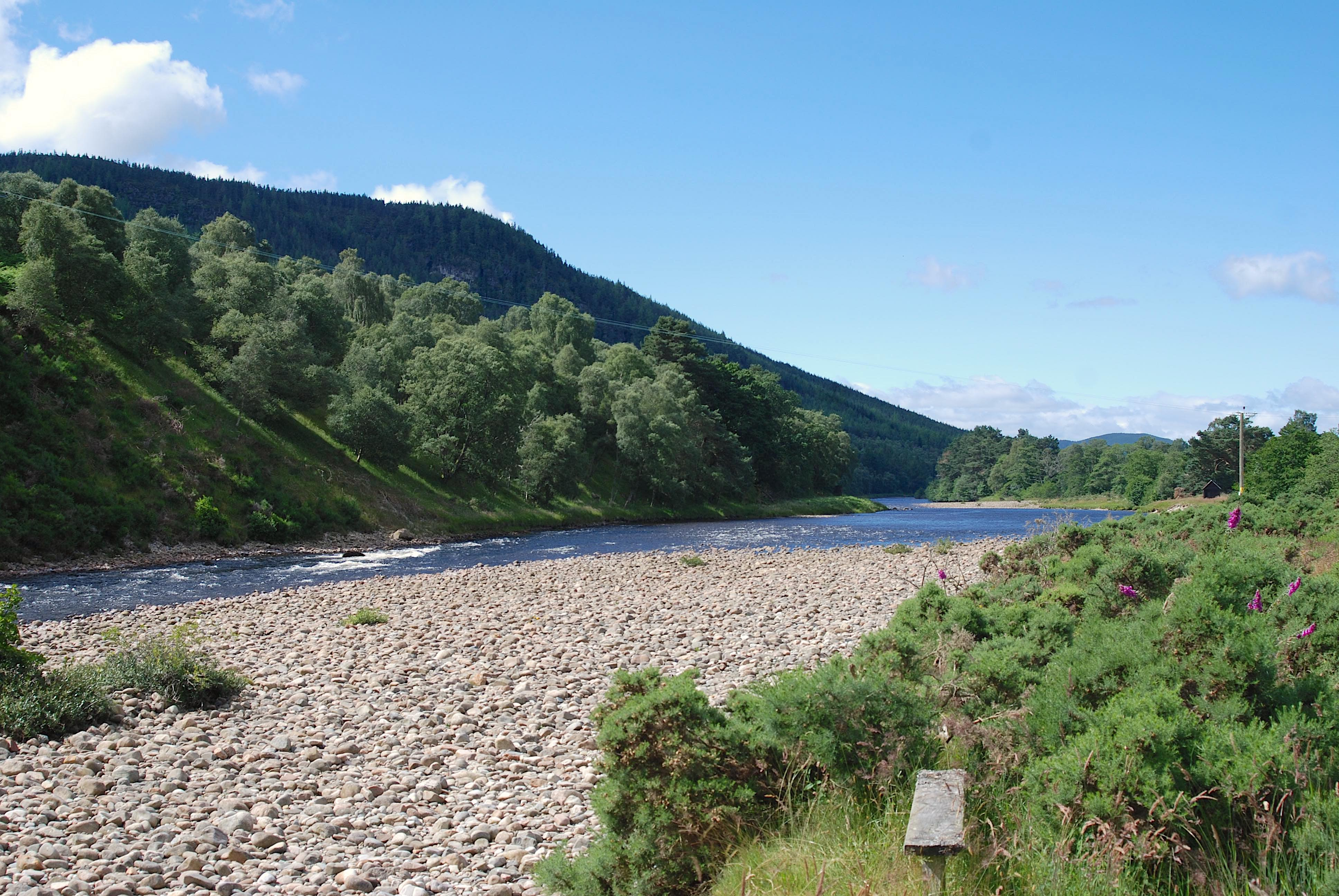 TWL Ian Gordon Value River Spey IV