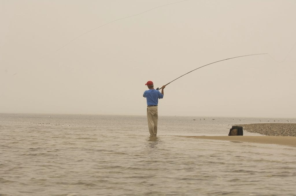 Fly Fishing Stripers in Cape Cod