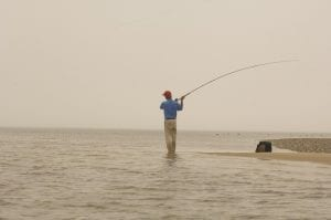 Fly Fishing Stripers in the New England Flats