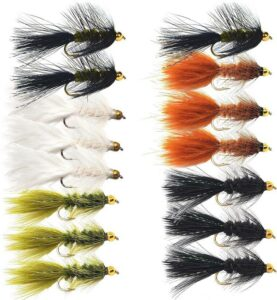 Wolly Bugger Flies