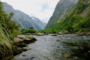 Fly Fishing New Zealand on a Budget II