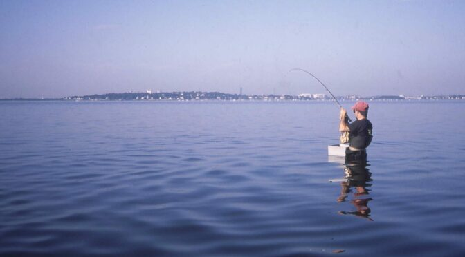 'Cause I love that dirty water – Fly Fishing Boston Harbor