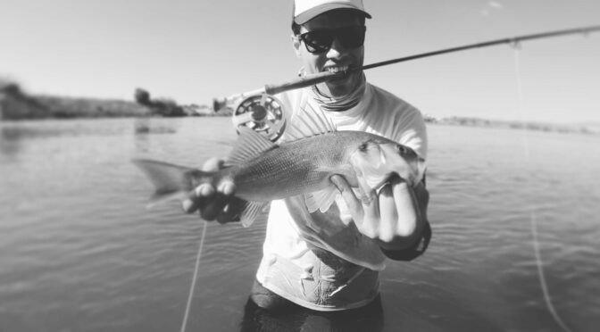 Fishing in Portugal: Sea bass on a Fly in the Algarve