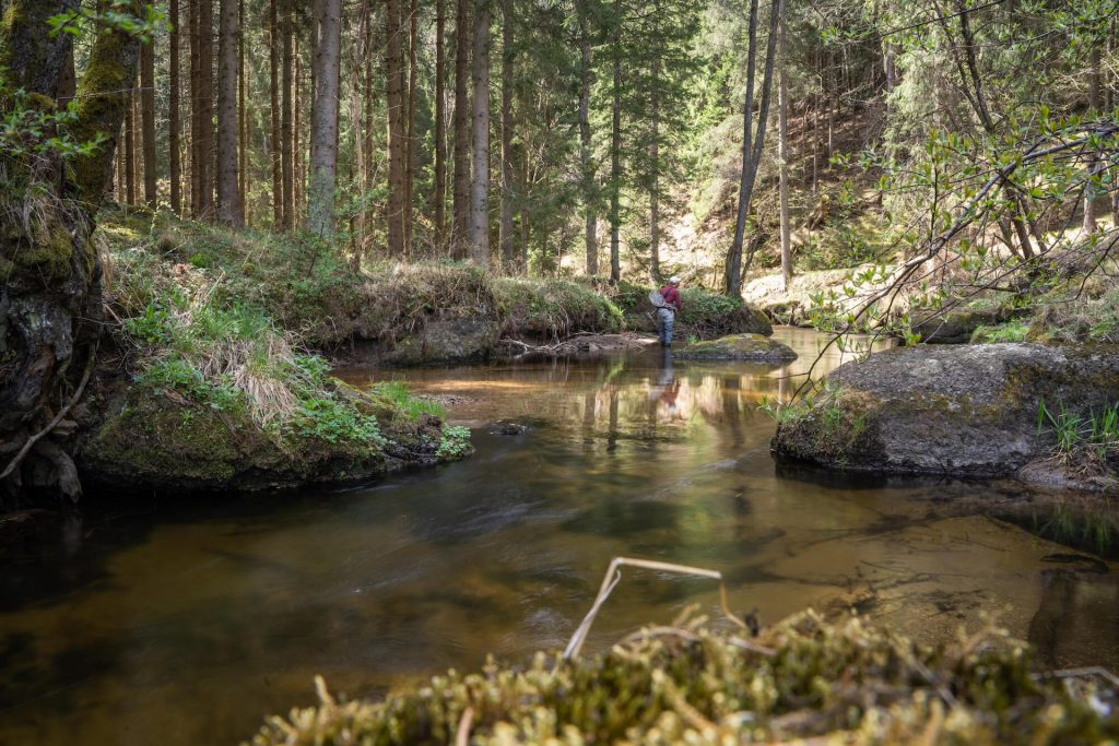 Fly Fishing Small Streams Careful Approach