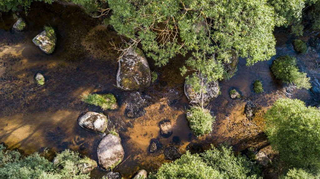 Fly Fishing Small Streams Aerial River View