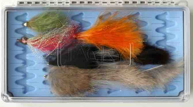 Best Streamer Fly Box – The Ultimate 2021 Guide