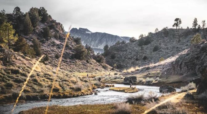 What is Fly Fishing? A Beginner's Guide