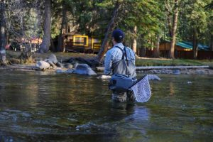 Man in river with fly fishing net