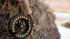 Fly rod and fly reel
