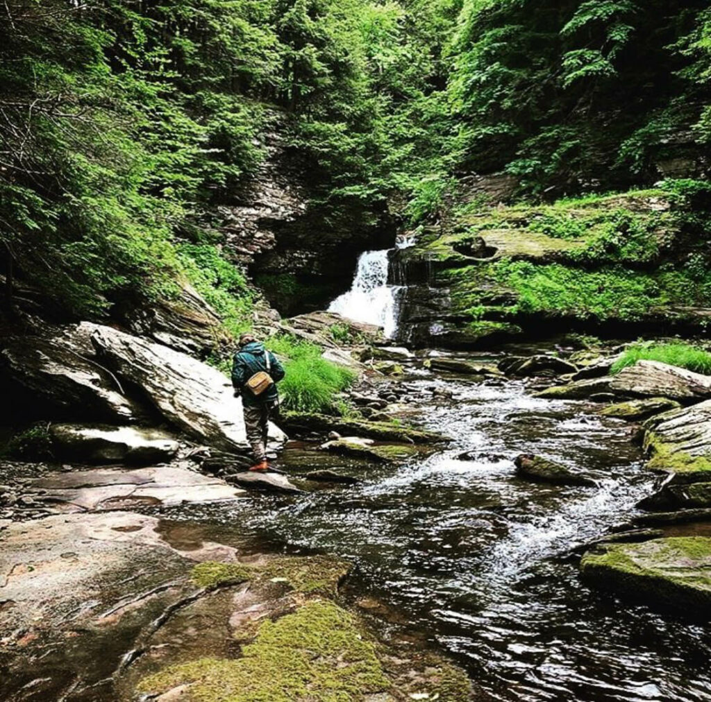 Fly fisherman on small creek