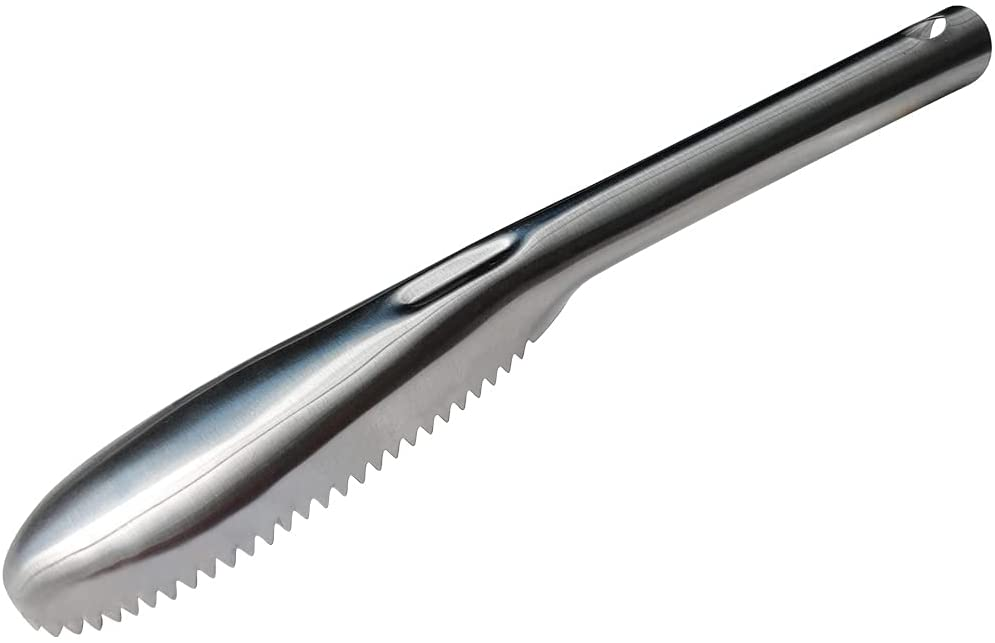 Fish Scaler, 304 Stainless Steel