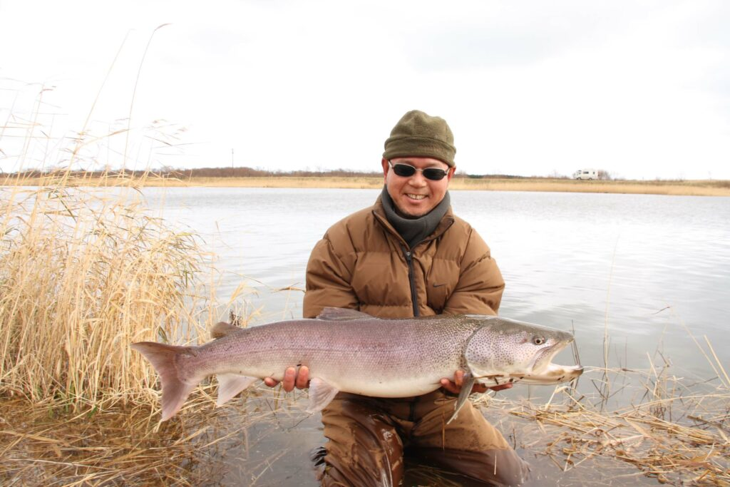 A Sakhalin Taimen in the hands of a fly fisherman